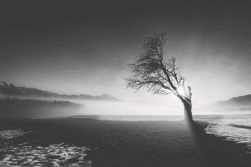 http://www.photographique.ch/avp_winter04_small.jpg